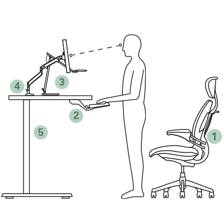 Ergonomic Image for Humanscale Master Classes